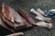 cedar plank making